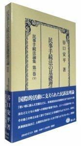 民事手続法の基礎理論 II